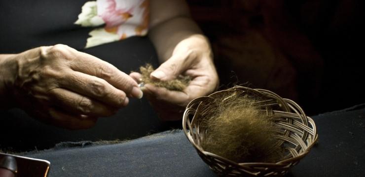 Il bisso nelle mani di Chiara Vigo. Foto di Roberto Rossi (www.fotorossi.com)